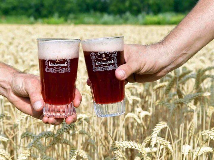 Le coinvolgenti birre Lambic della Lindemans.