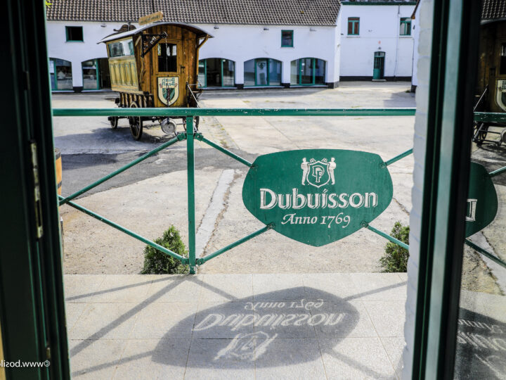 Belgio: le grandi specialità della Brasserie Dubuisson